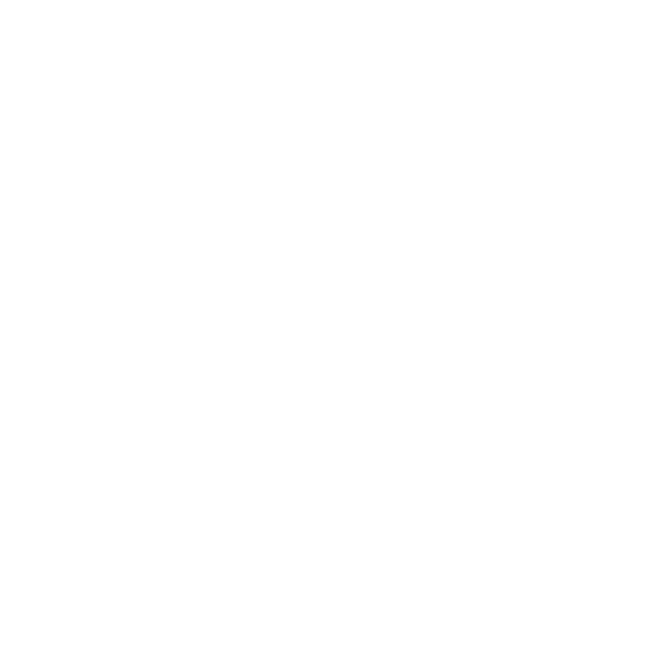 texas-star-white